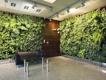 8 простых способов создать вертикальный сад на стене внутри вашего дома